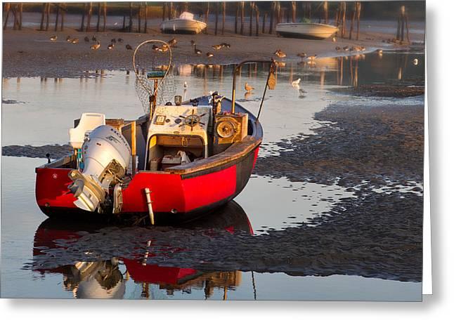 Cape Neddick Harbor Greeting Card by Jerry Fornarotto