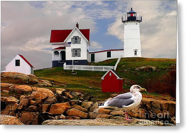 Cape Neddick Lighthouse Maine Greeting Card by Nick Zelinsky