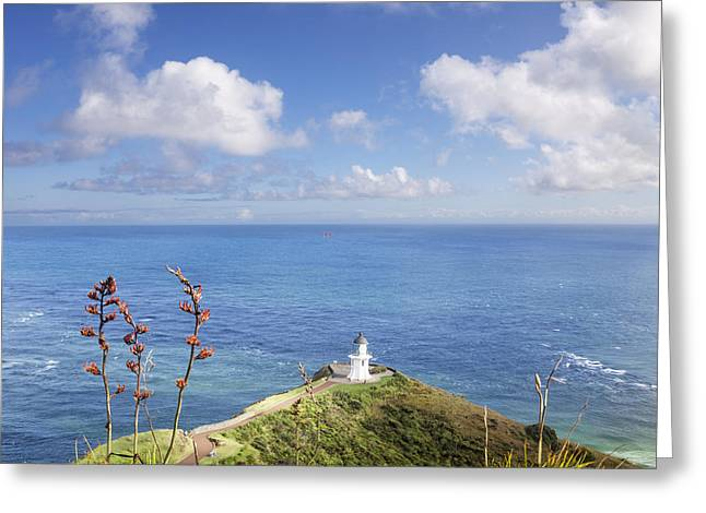 Cape Reinga Northland New Zealand Greeting Card by Colin and Linda McKie