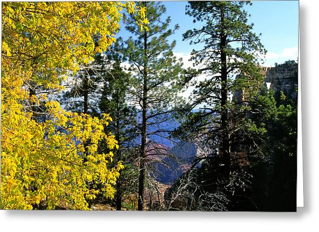 Cape Royal Grand Canyon Greeting Card by Ed  Riche