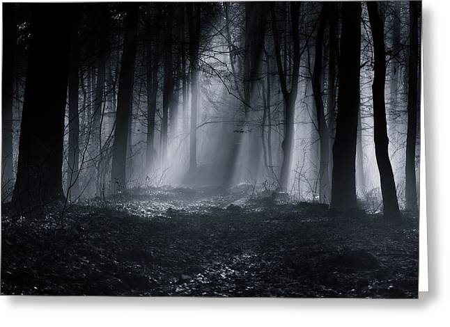 Capela Forest Greeting Card