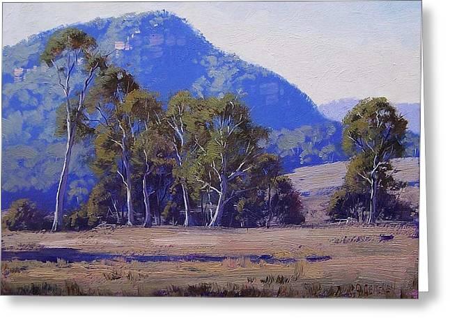Capertee Eucalyptus Trees Greeting Card by Graham Gercken