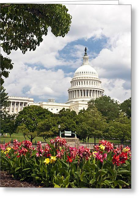 Capitol Buildingwashington Dc And Flower Garden Greeting Card