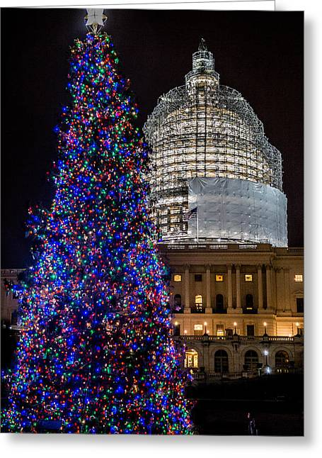 Capitol Christmas Tree 2014 Greeting Card