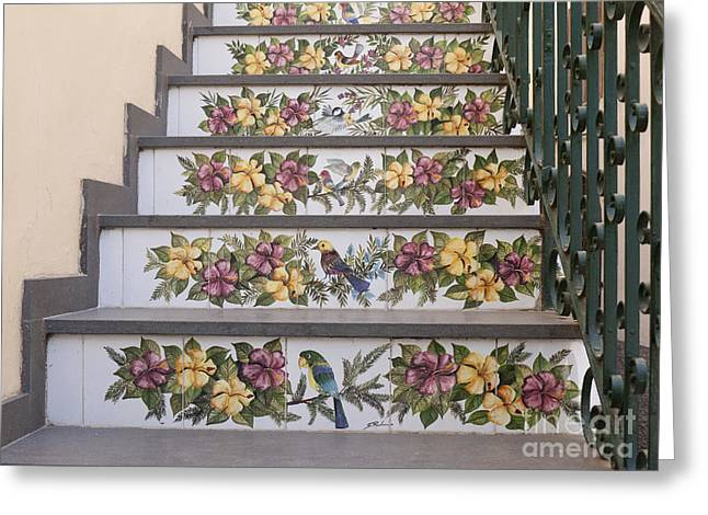 Capri Staircase With Birds Greeting Card