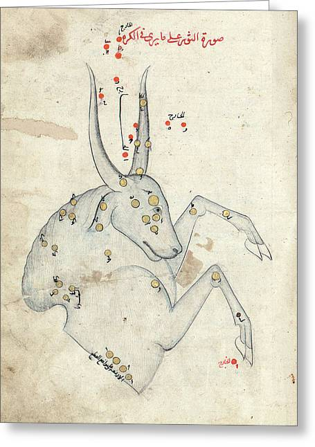 Capricornus Constellation Greeting Card by Library Of Congress