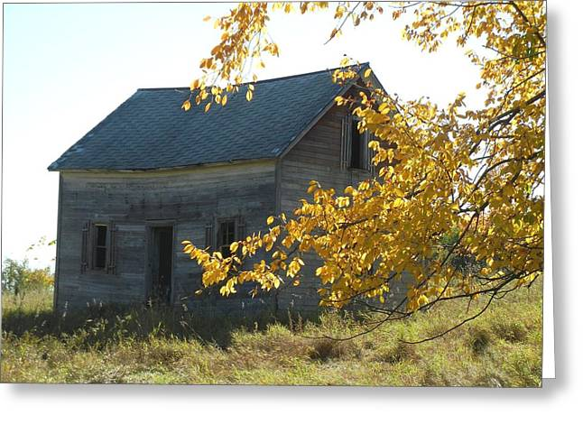 Greeting Card featuring the photograph Captain Ed's Homestead by Penny Meyers