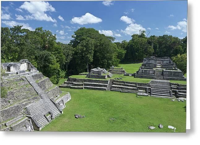 Caracol Ancient Mayan Site, Belize Greeting Card by William Sutton