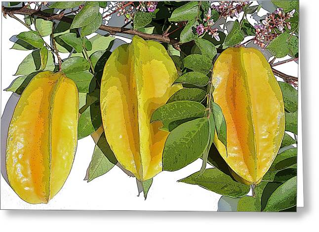 Carambolas Starfruit Three Up Greeting Card by Olivia Novak
