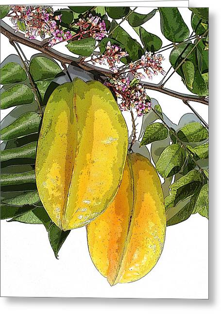 Carambolas Starfruit Two Up Greeting Card by Olivia Novak