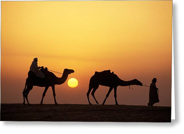 Caravan Morocco Greeting Card by Panoramic Images