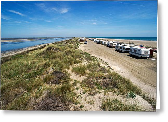 Caravans Aligned On Beach Greeting Card by Sami Sarkis
