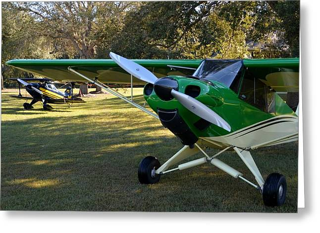 Carbon Cub And A Pitts Greeting Card by Matt Abrams