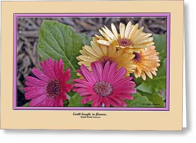 Card  0019 Greeting Card by Helen Ellis