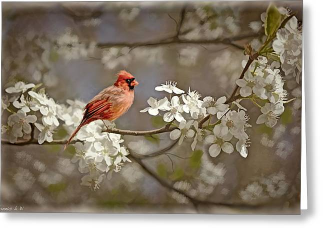 Cardinal And Blossoms Greeting Card