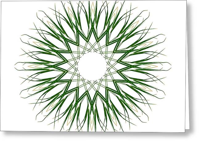 Carex Sylvatica Greeting Card