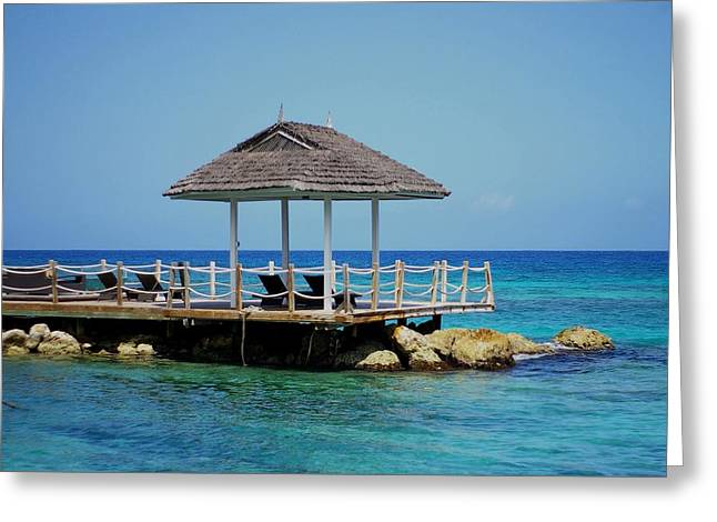 Greeting Card featuring the photograph Caribbean Breeze by Randy Pollard