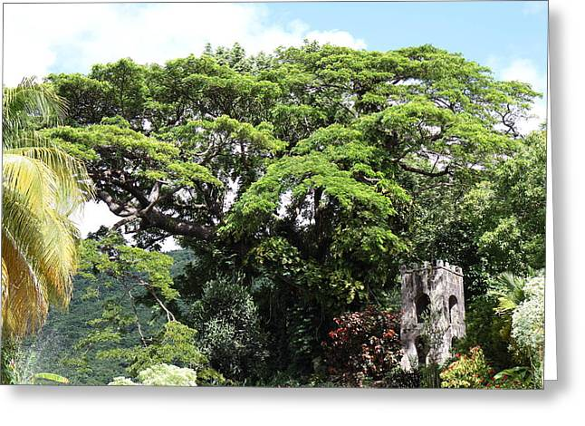 Caribbean Cruise - St Kitts - 1212215 Greeting Card