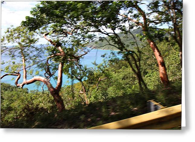 Caribbean Cruise - St Thomas - 1212110 Greeting Card by DC Photographer