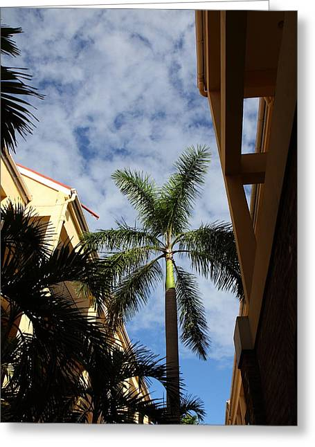 Caribbean Cruise - St Thomas - 121239 Greeting Card by DC Photographer