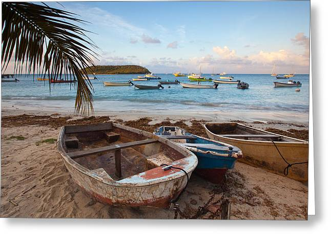 Caribbean Morning Greeting Card