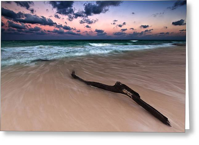 Caribbean Sunset Greeting Card by Mihai Andritoiu