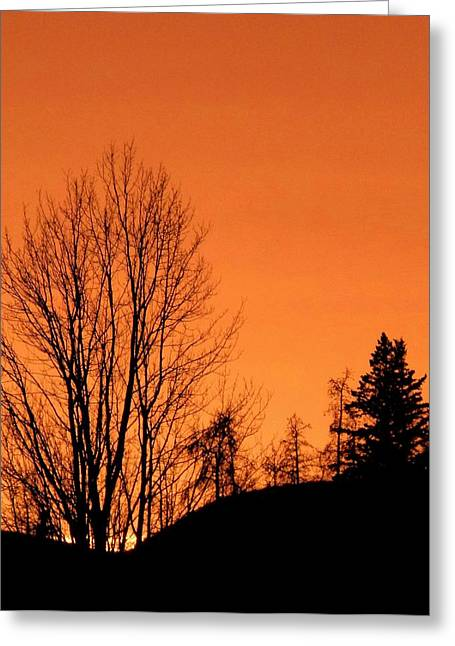 Cariboo Country Silhouettes Greeting Card