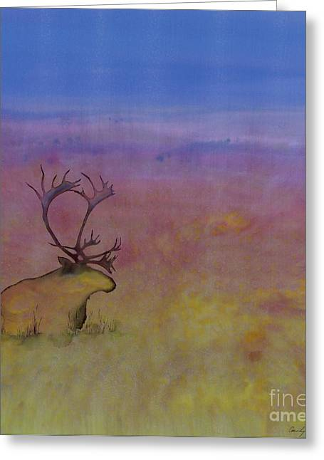 Caribou On The Tundra Greeting Card by Carolyn Doe
