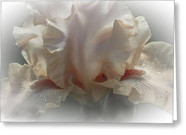 Carmel Greeting Card by Elaine Teague