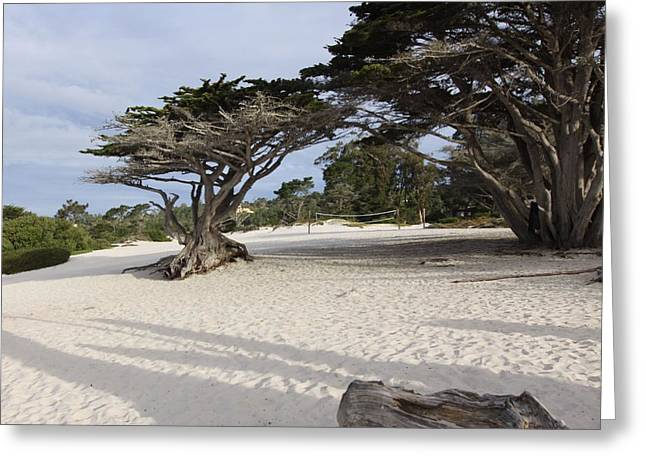 Carmel Greeting Card by Kandy Hurley