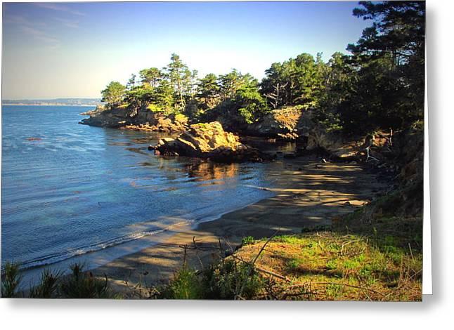 Carmel Meadows Beach At Point Lobos Greeting Card