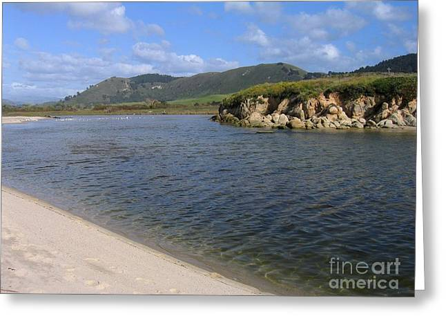 Carmel River Lagoon Greeting Card