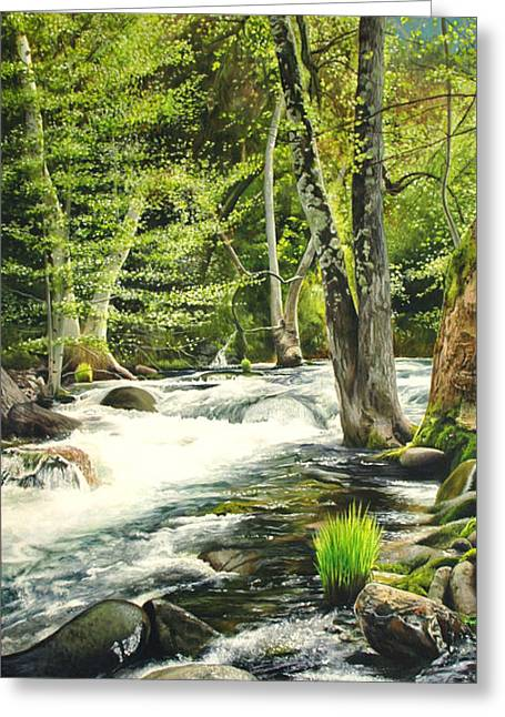 Carmel River Upper Watershed Greeting Card by Logan Parsons