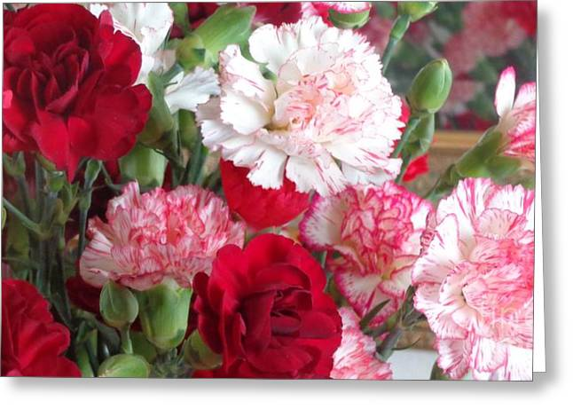 Carnation Cluster Greeting Card