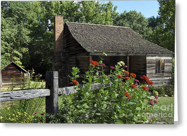 Carolina Garden Greeting Card by Skip Willits