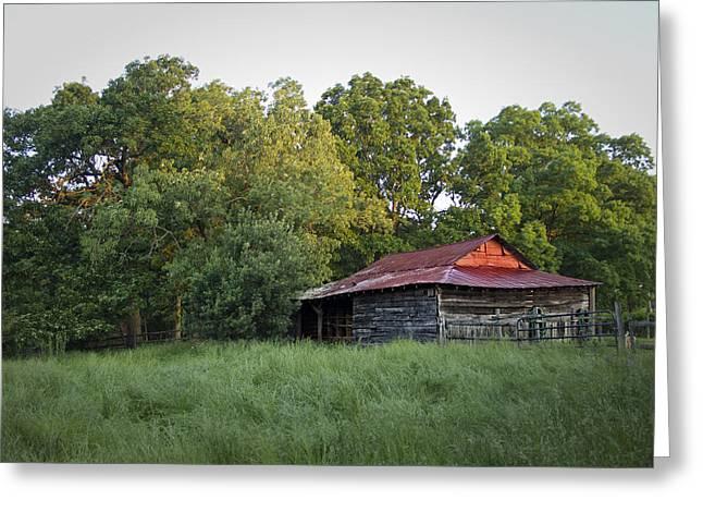 Carolina Horse Barn Greeting Card