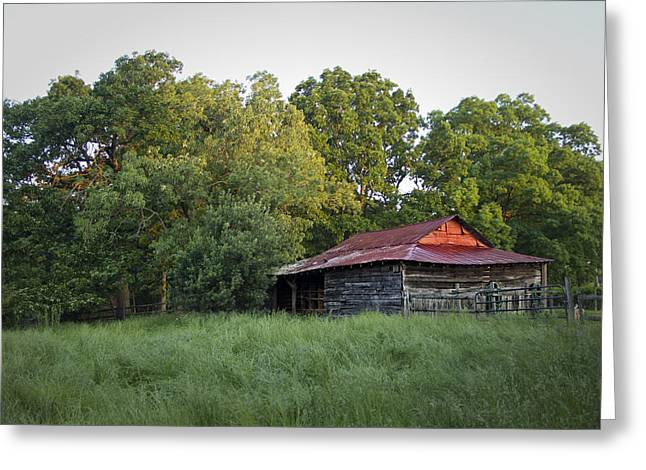 Carolina Horse Barn Greeting Card