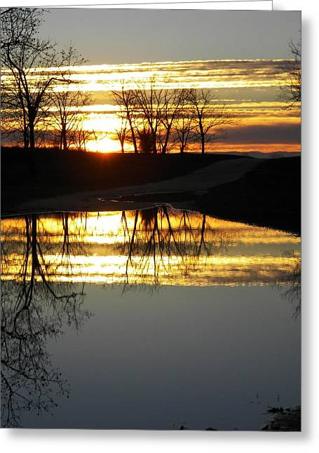 Carolina Sunrise Greeting Card