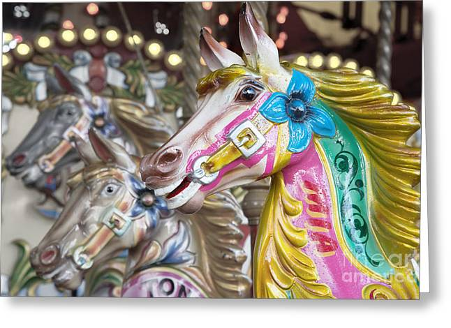 Carousel Horses Greeting Card by Jane Rix