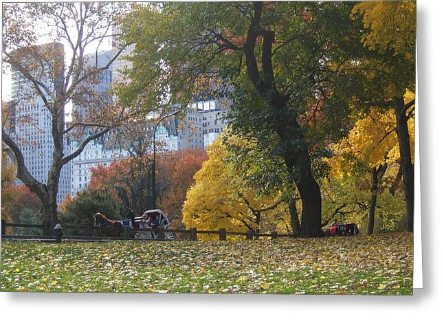 Greeting Card featuring the photograph Carriage Ride Central Park In Autumn by Barbara McDevitt