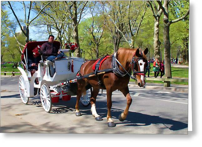 Greeting Card featuring the photograph Carriage Ride In Central Park by Eleanor Abramson