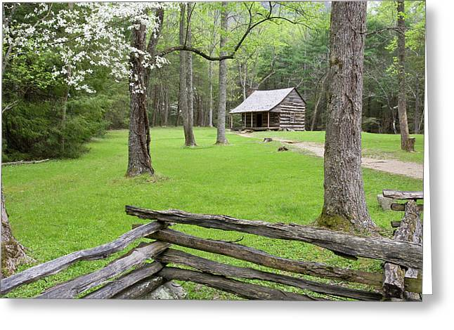 Carter Shields Cabin In Spring, Cades Greeting Card by Richard and Susan Day