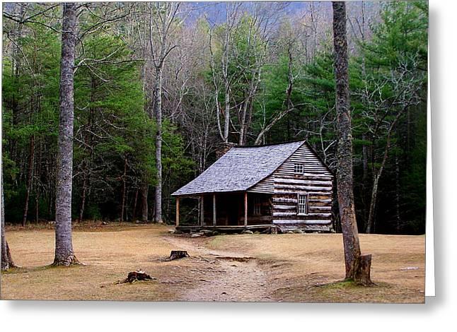 Carter Shields' Cabin Greeting Card by Jim Finch