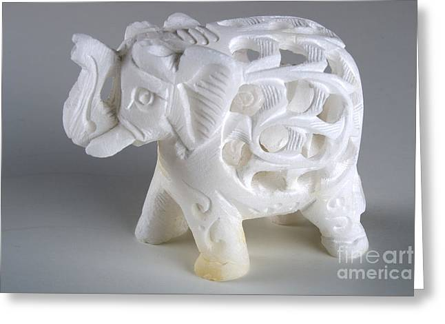 Carved Elephant Greeting Card by Alan Look