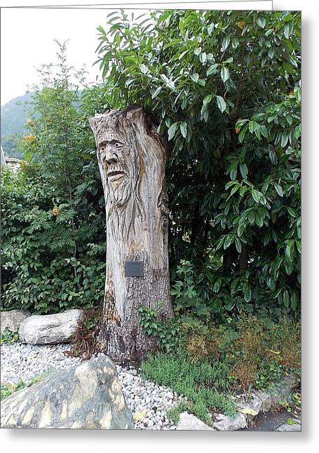 Carved Tree Greeting Card