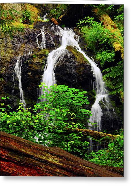 Cascade Falls, Moran State Park, Orcas Greeting Card by Michel Hersen