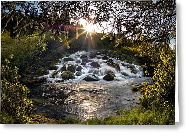 Cascade In Evening Sun Greeting Card