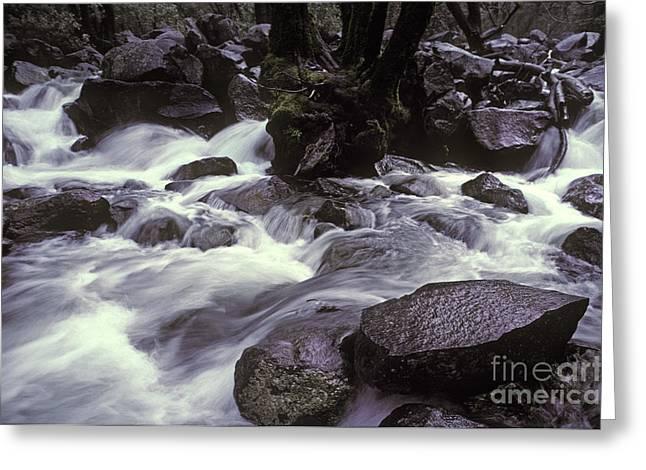 Cascade Greeting Card by Ron Sanford