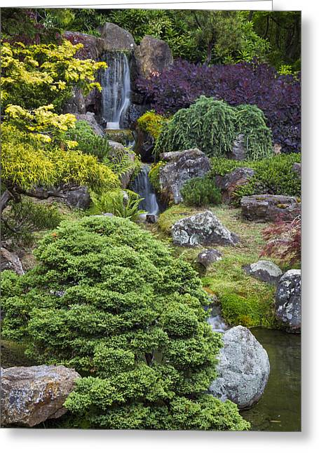 Cascade Waterfall - Japanese Tea Garden Greeting Card by Adam Romanowicz