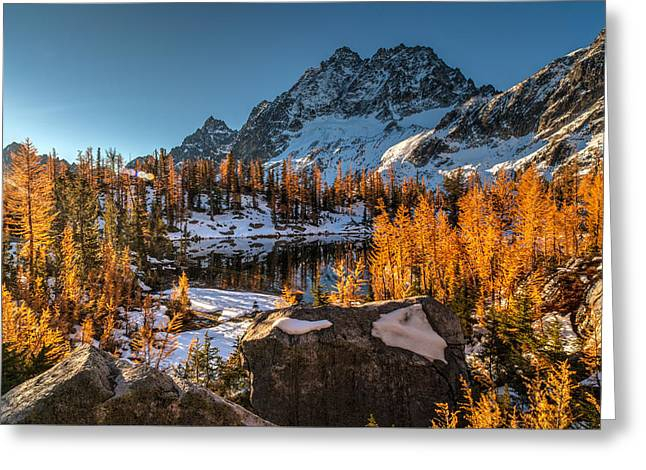 Cascades Ring Of Larches Greeting Card by Mike Reid